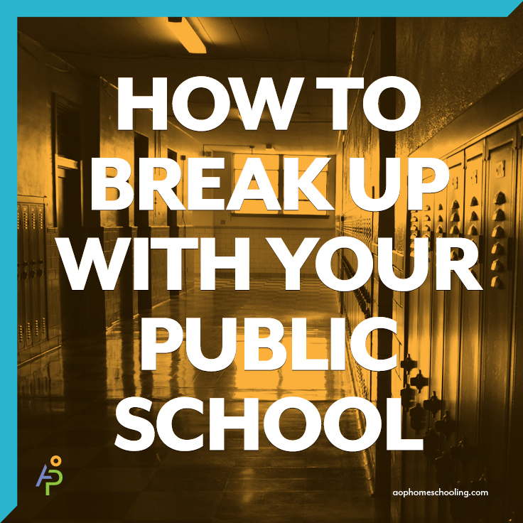 How to Break up with Your Public School